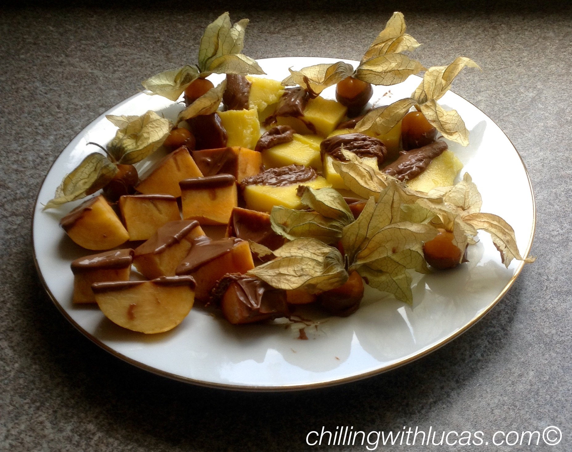 a selection of fruit cut up on a plate drizzled in chcolate