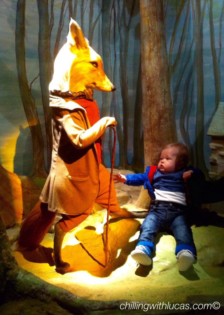 lucas at the world of beatrix potter next to mr fox