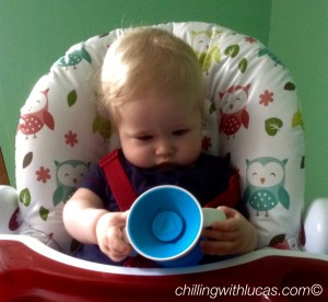 lucas looking at the blue munchkin cup
