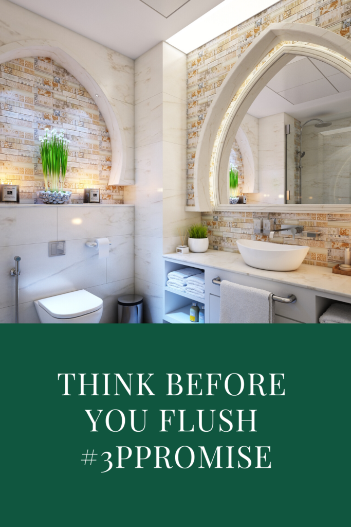 Think Before You Flush #3PPromise