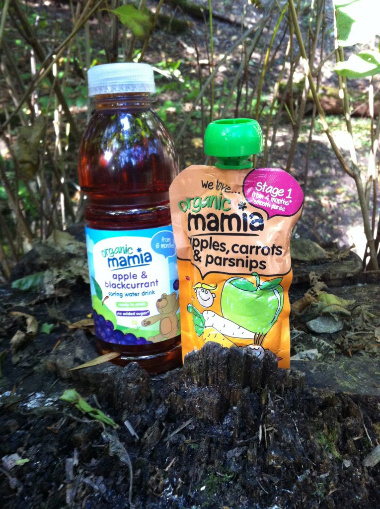 Mamia days out bottle of blackcurrant spring water and pouch of fruit puree both stood on a tree stump