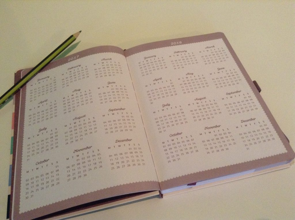 Busy B Diary Review