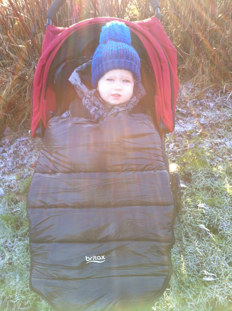 Britax cosytoes review