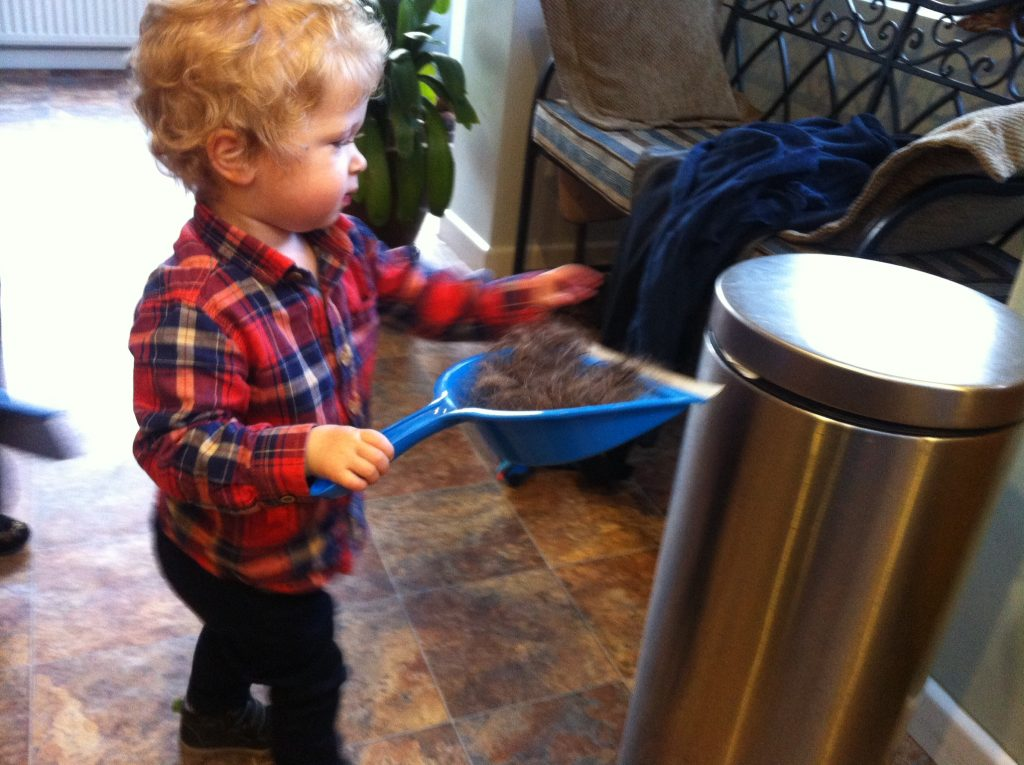 Lucas standing wearing a red and blue checked shirt and navy trousers, blonde wavy hair, carrying a blue dustpan full of hair to the silver bin
