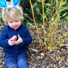 Easter egg hunt, Lucas is sat looking at the pink foiled egg he has just picked up