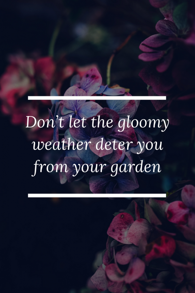 Don't let the gloomy weather deter you from your garden