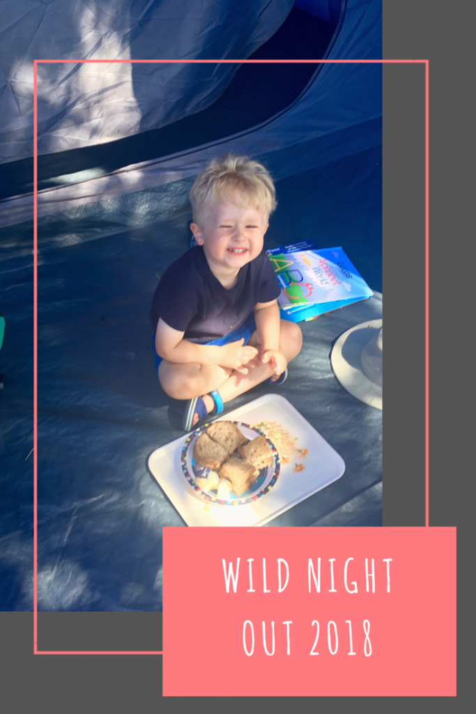 Wild Night Out 2018. Spend a day or night outside with fun activities and leave the screen time alone