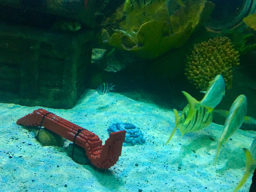 Lego Ocean Explorers at Sea Life, Blackpool Red Lego in the tank