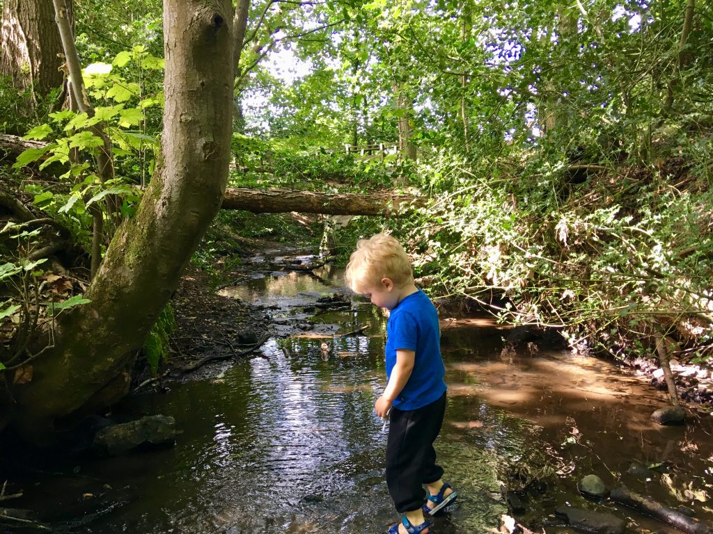 Lucas is paddling in the stream, he is looking down at the water and behind him you can see trees and sun light streaming through