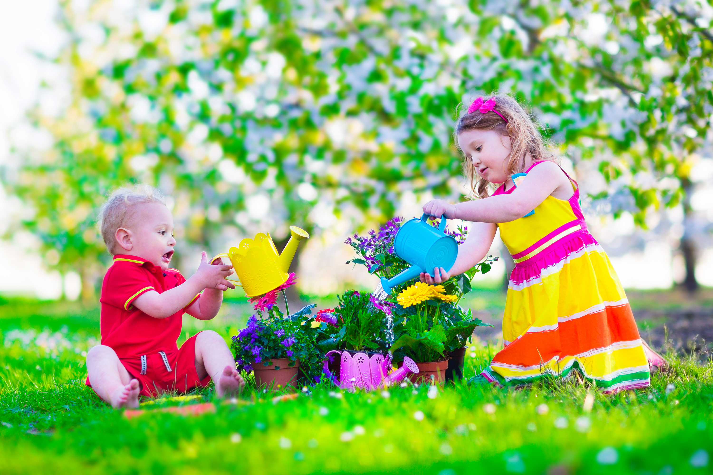 Kids gardening. Children playing outdoors. Little girl and baby boy, brother and sister, working in the garden, planting flowers, watering flower bed. Family in blooming fruit tree orchard. Summer vacation on a farm.