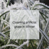Cleaning artificial grass in winter