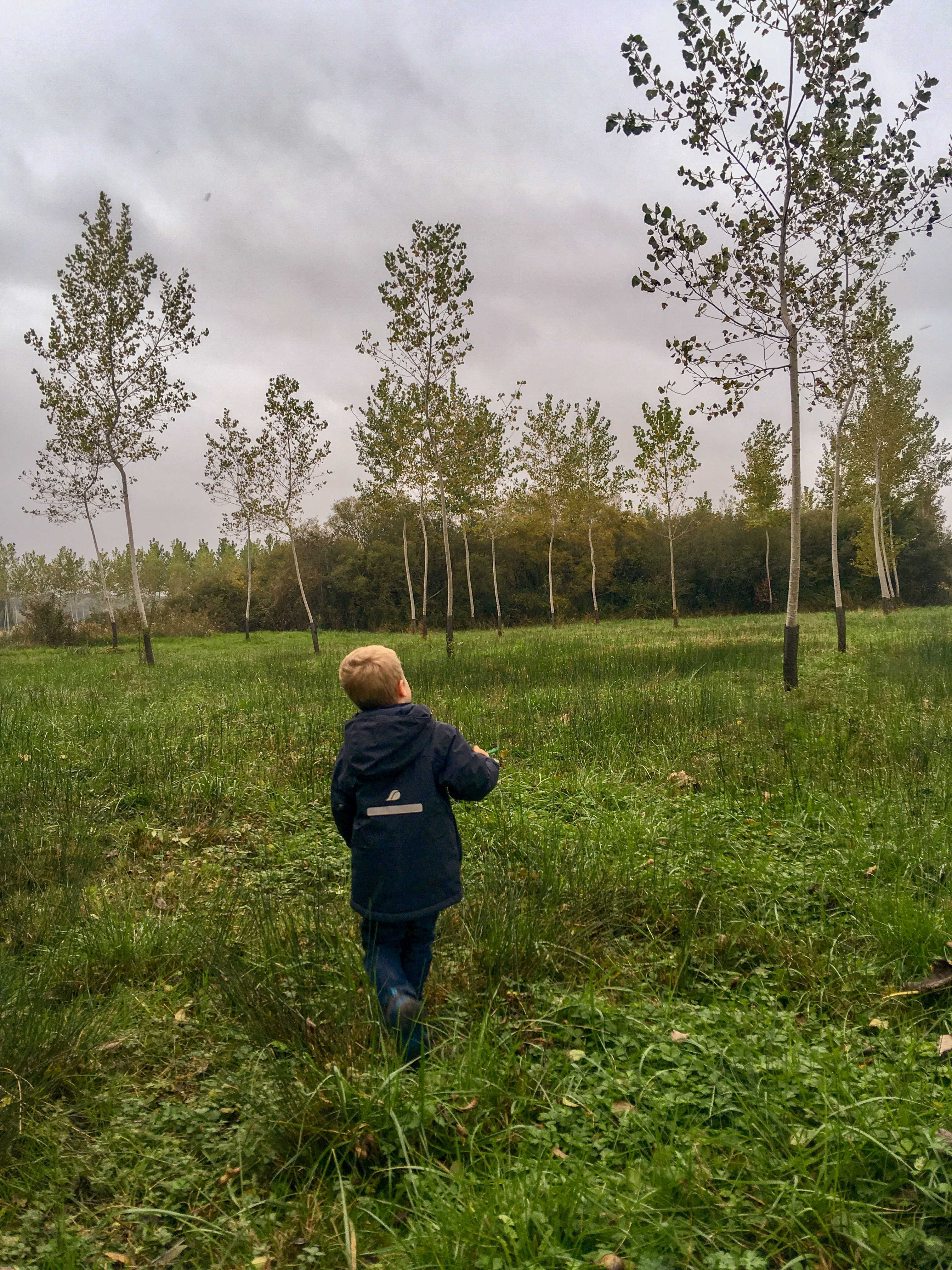 Lucas walking through a field looking up into the trees