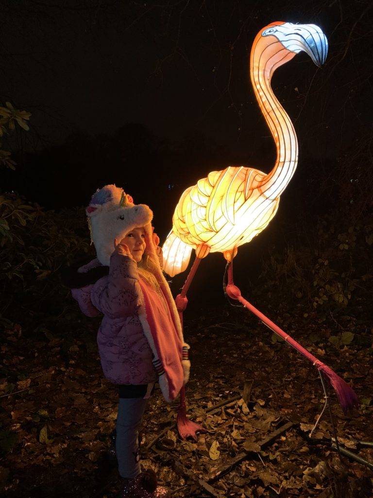 Spike next to a lit up flamingo lightopia manchester