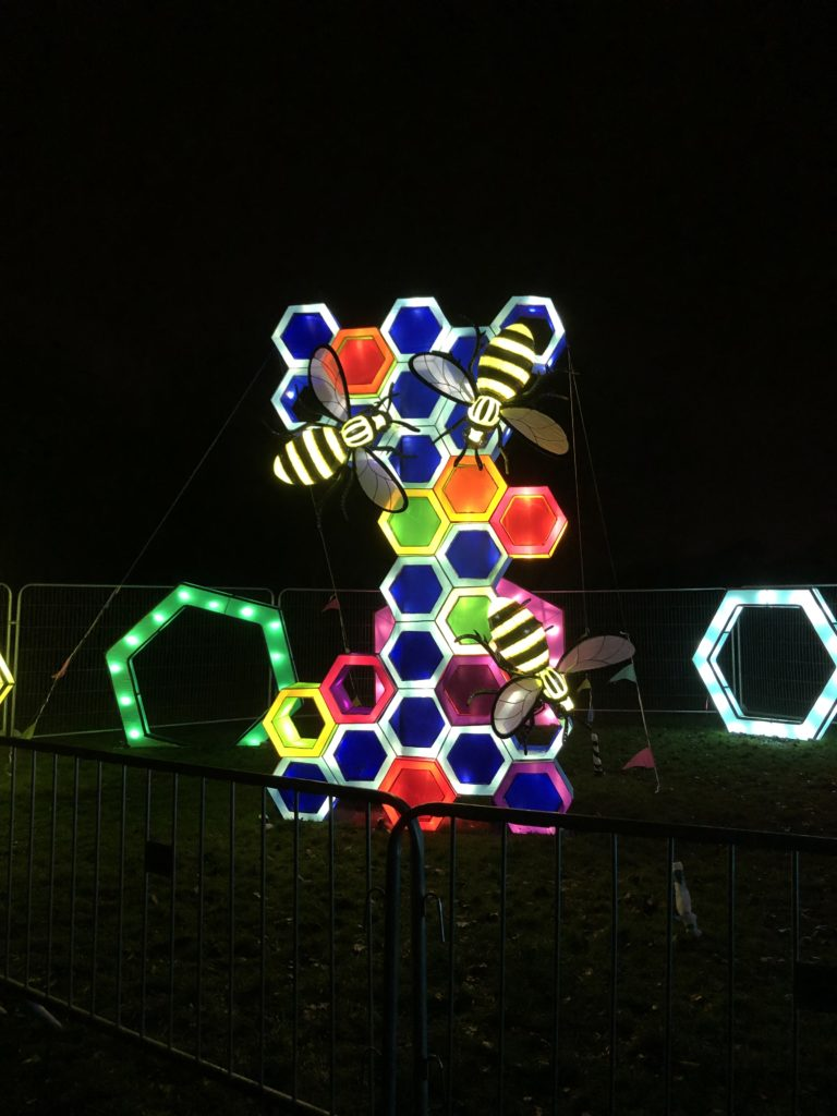 Multicoloured honey comb and bee lit up lightopia manchester