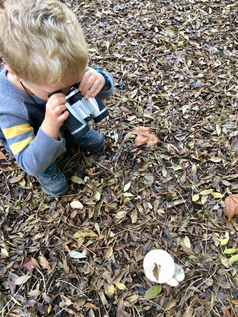 Lucas broached down looking at mushrooms through binoculars