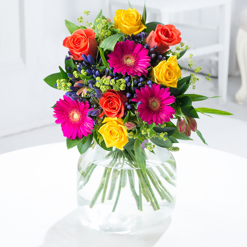 Blossoming gifts bright bloom bouquet. A stunning and bright bouquet of cerise germini, vibrant wow and tara roses with blue agapanthus complemented by foliage.