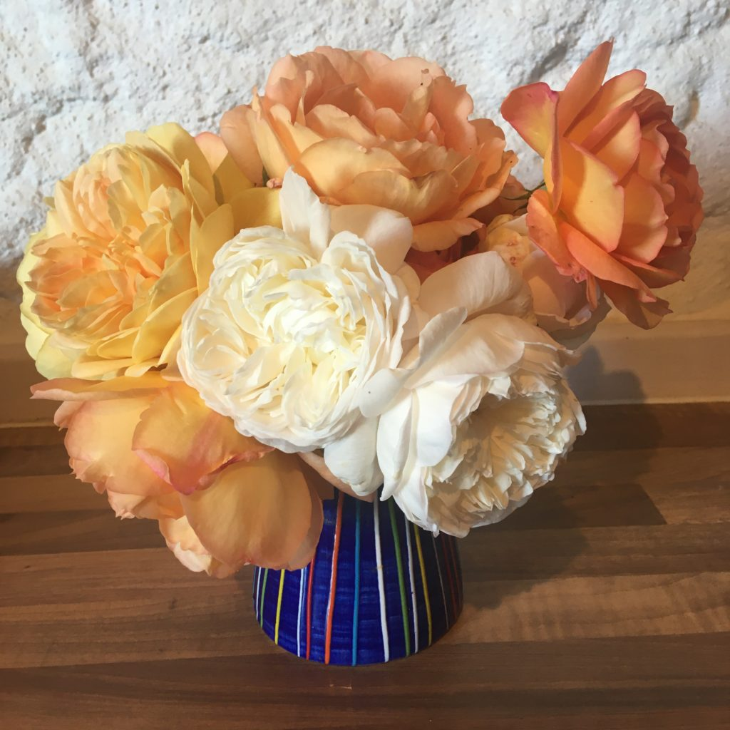 Peach yellow and cream flowers picked from the garden in a blue stripy vase