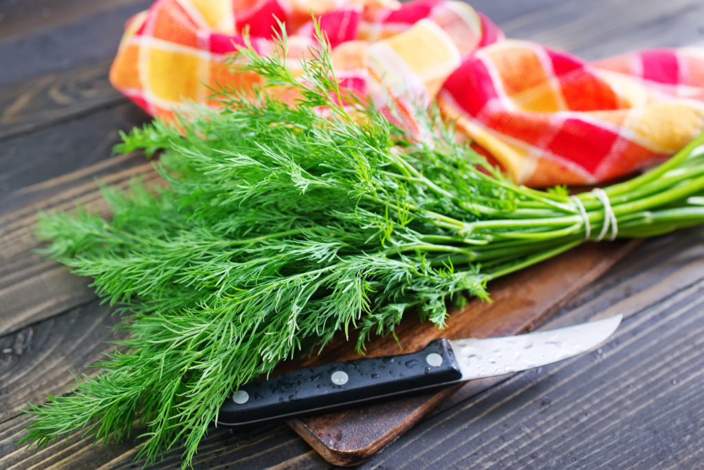fresh dill and a knive on w ooden chopping board and pink/orange napkin