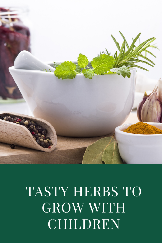 Tasty Herbs to Grow with Children