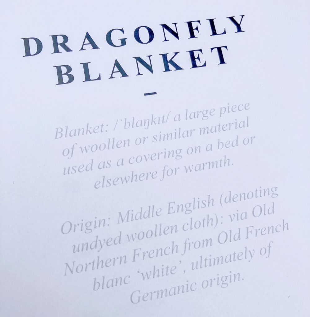Dragonfly blanket text from the instruction book