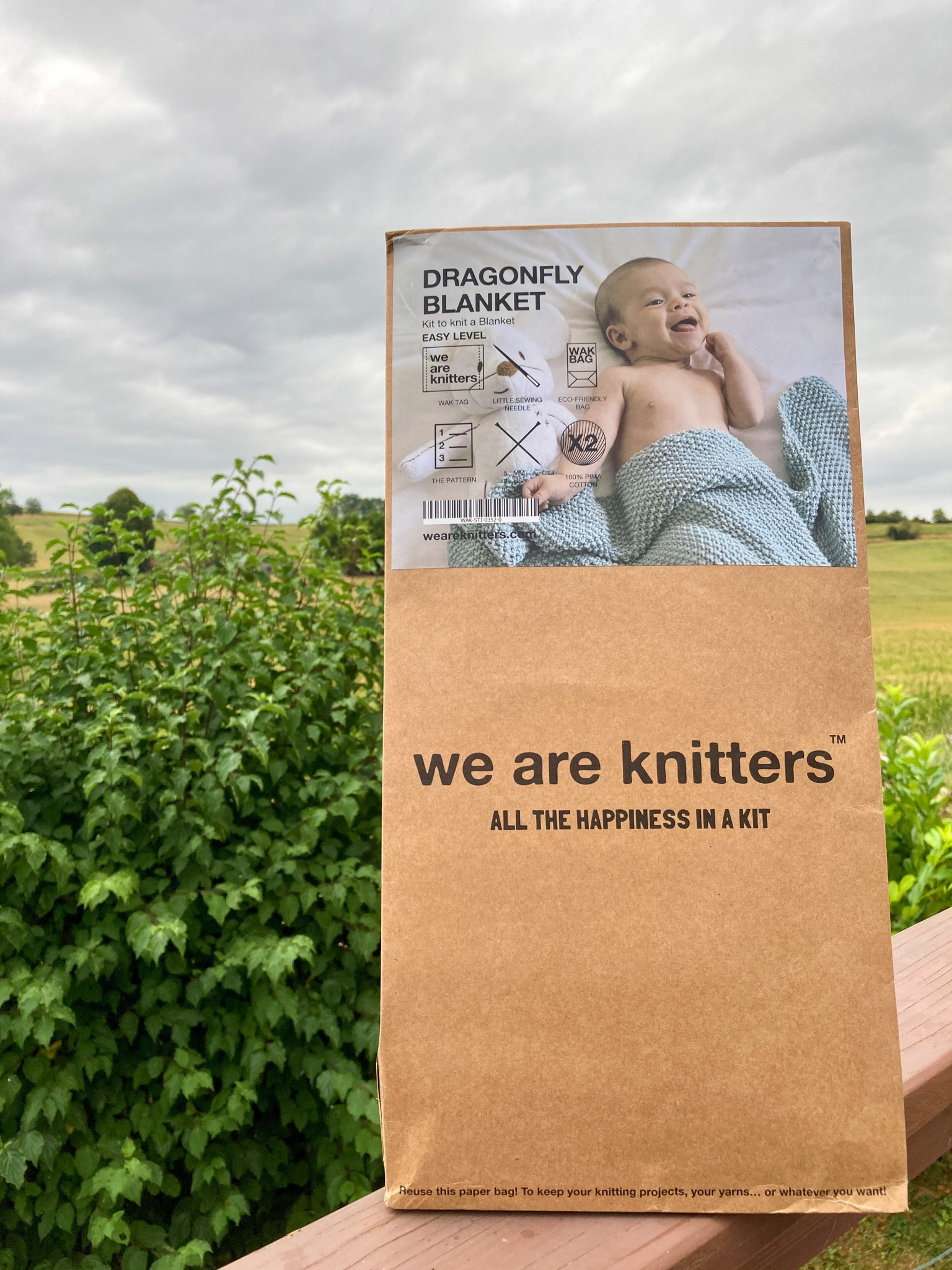 We are knitters dragonfly blanket kit in a brown paper bag