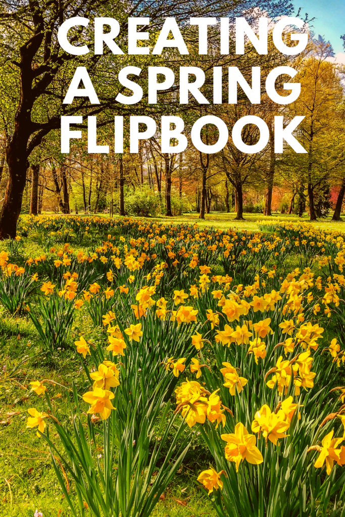 Creating a spring flipbook. Get outside with your children, find a plant or spot you like and take a photo each day to see it develop