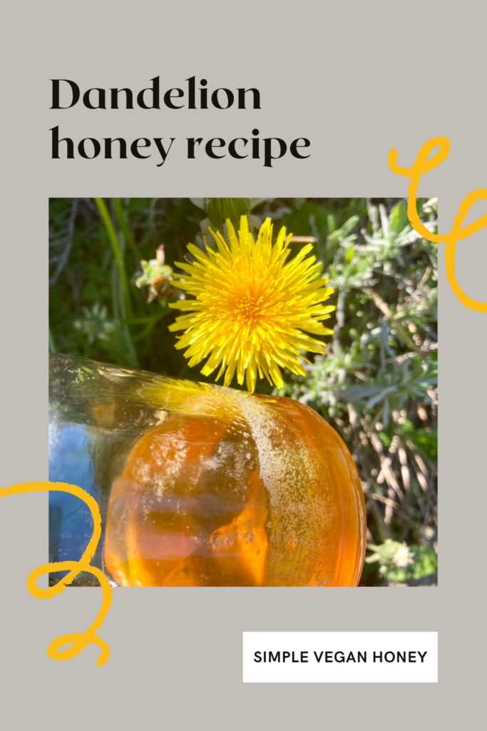 Dandelion honey recipe. The dandelion may be known as a weed but has been used for centuries for food as well as medicinal purposes.