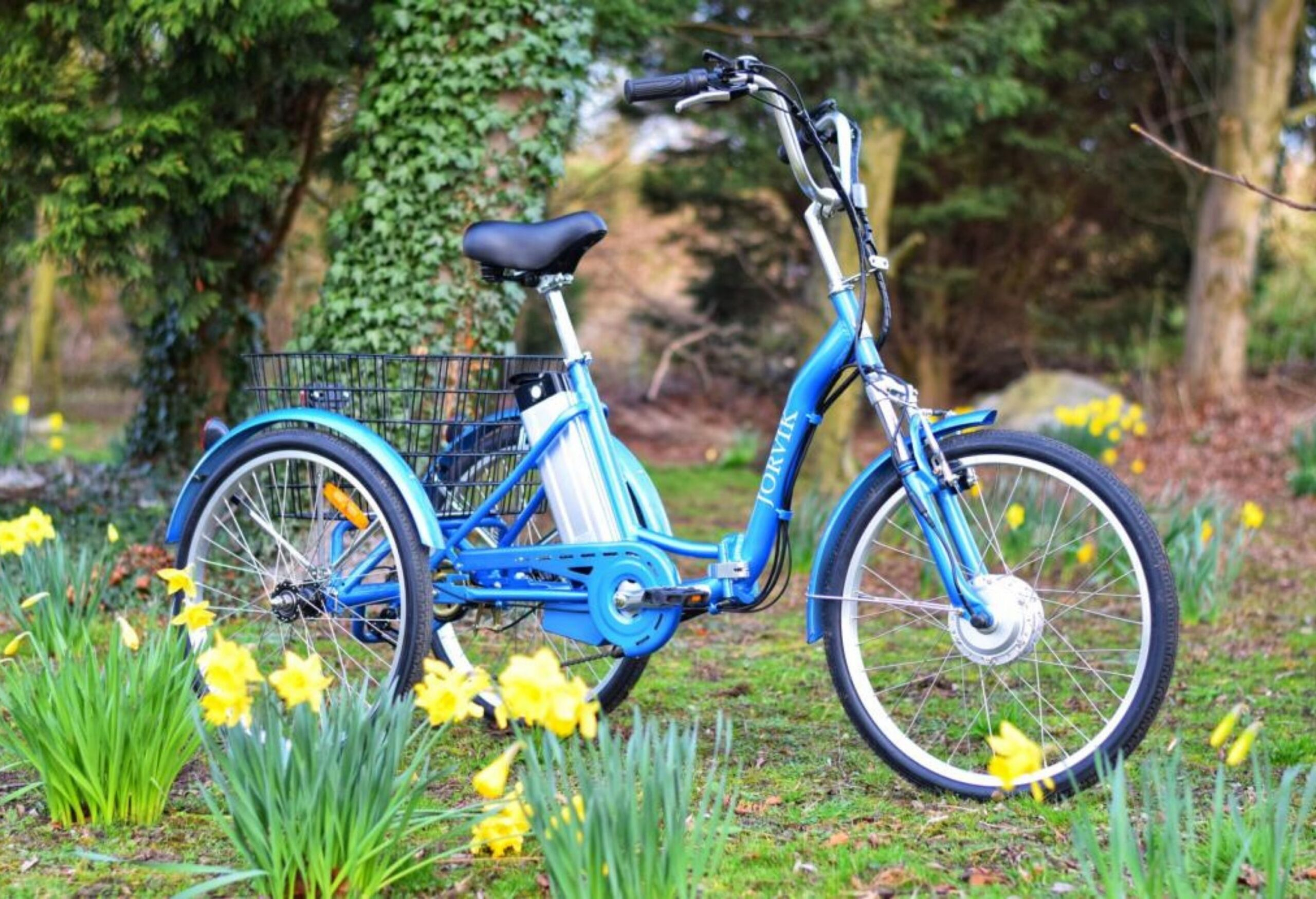 blue tricycle in spring