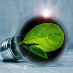 lightbulb with green leaves in it