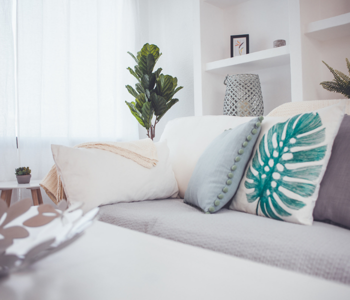 a white sofa with pale cushions on, white voiles behind covering the window, white shelving and a green plant